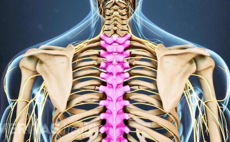 Tulang Punggung Wajib Dijaga Kondisinya. Ini yang Harus Dilakukan?